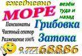 Затока,  Грибовка,  Ильичевск-ежедневное отправление