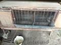 Продам клетки для кроликов,  большая 400 руб,  маленькая 200 руб